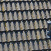 02-dach-reinigung-dachflächenreinigungalgen-moos-entferner-hochdruckreinigung
