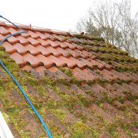 01-Dach-reinigen-Rostock