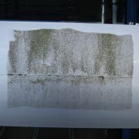 Fassadenreinigung-Rostock-Schwimmhalle-Gehlsdorf-Wiro-GmbH16