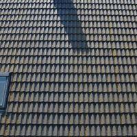 01-Dachreinigung-rostock-dach-algen-moos-entferner-reinigung-hochdruckreinigung