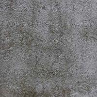 01-beseitigung-algen-moos-entfernung-hausfassade-in-rostock