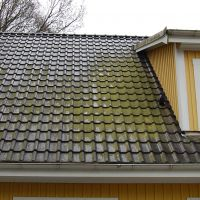 01-Fassade-Dach-reinigen-Prerow-Rostock