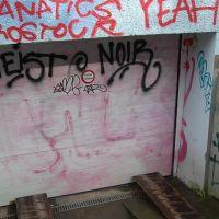 01-Graffitientfernung-in-Rostock-Garagentor-Fassade-reinigen-Farbe-einlesen