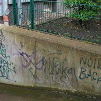 04-Graffitientfernung-in-Rostock-Garagentor-Fassade-reinigen-Farbe-einlesen