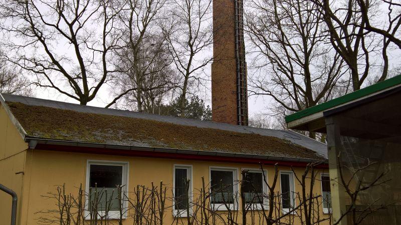 moos vom dach entfernen simple fassade reinigen with moos vom dach entfernen amazing am dach. Black Bedroom Furniture Sets. Home Design Ideas