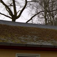 02-Dach-reinigen-Moos-beseitigen-in-Rostock