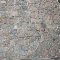 03-denkmalreinigung-kalkausblühungen-zementschleier-entfernen-rostock-kuchelmiß-turm-fuer-zwei